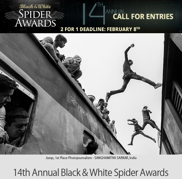 14° Black & White Spider Awards