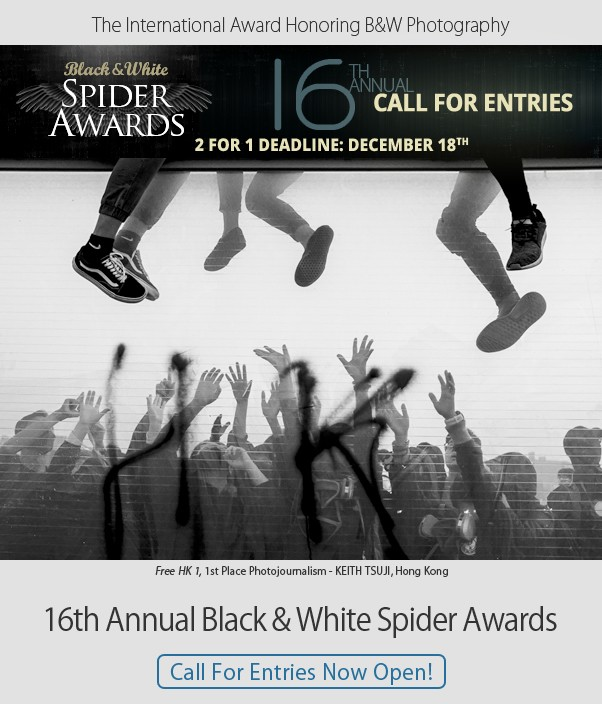 16th Black & White Spider Awards