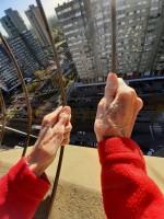 """1° Premio Desde mi ventana: Nora Montoto (Buenos AIres, Argentina) """"Quiero salir!!!"""""""