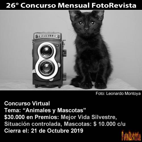 26° Concurso Mensual FotoRevista