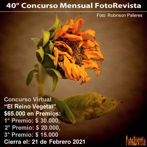 40° Concurso Mensual FotoRevista