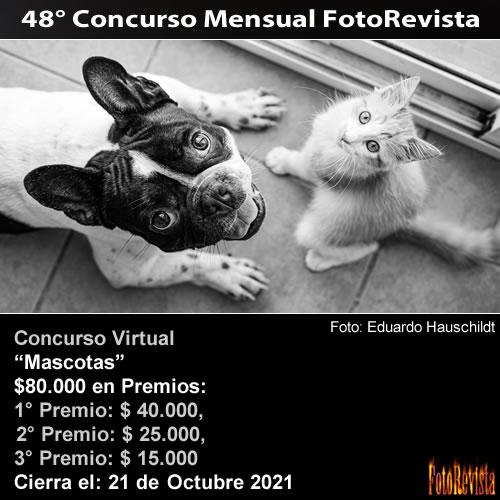 48° Concurso Mensual FotoRevista